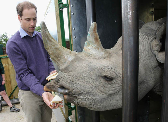 Prince William with a Rhino