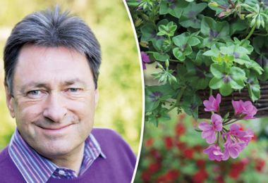 Alan Titchmarsh: Get 'odd jobs' in the garden out the way now to beat the cold winter
