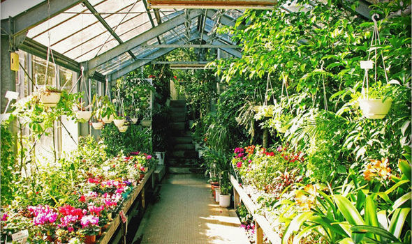 Alan Titchmarsh On The Advantages Of A Greenhouse