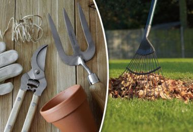 Hand tools are quicker, cheaper, quieter and do the job better, says ALAN TITCHMARSH
