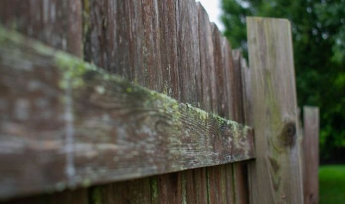 How to clean green marks off your fence