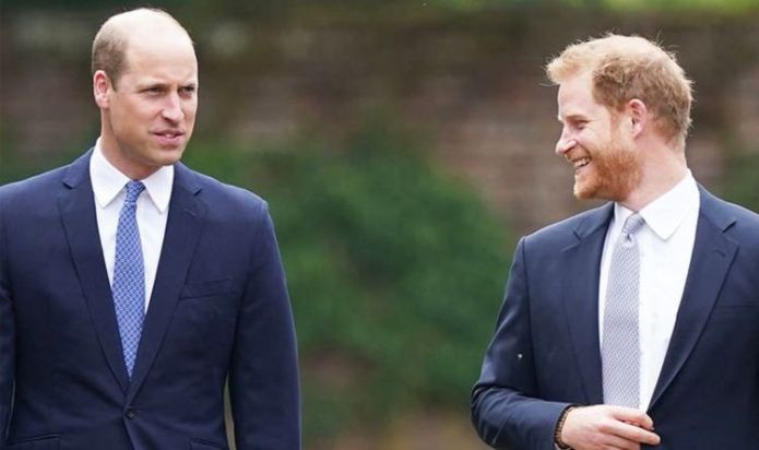 'Sons first and foremost': William and Harry's body language shows 'unity' at Diana statue