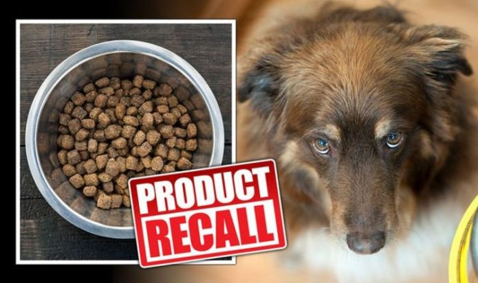 Dog food recalled over salmonella contamination and risk to human health - full list