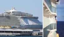 Cruise: Passenger dangers her personal life for the right photograph – slammed as 'fool' 1192276 1