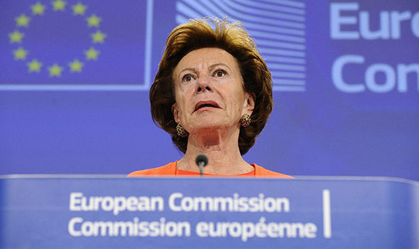 Dutch former Commissioner Neelie Kroes