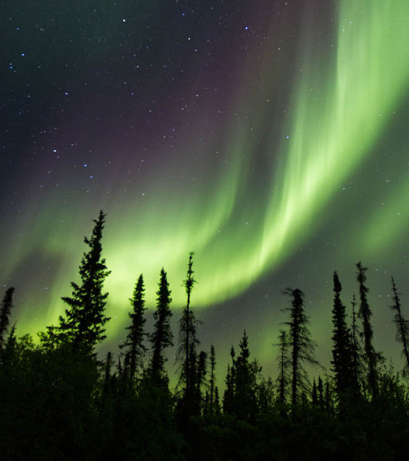 DONT MISS Rare chance to see stunning Northern Lights