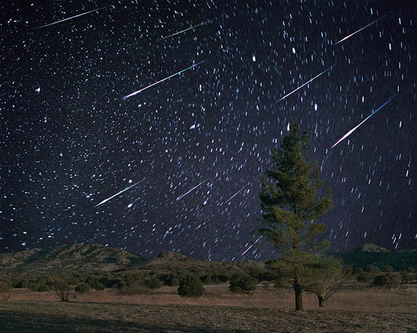 What is the best time to see the Perseid meteor shower