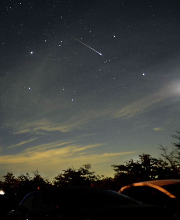 What time is the Leonid Meteor Shower TONIGHT  Science