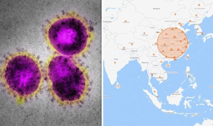 Coronavirus LIVE map: Check HERE for interactive map of COVID-19 ...