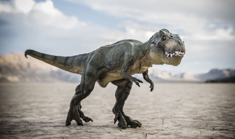 Jurassic Park was RIGHT  T Rex type dinosaur did EXIST in