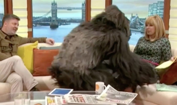 Kate Garraway is scared by the gorilla on Good Morning Britain