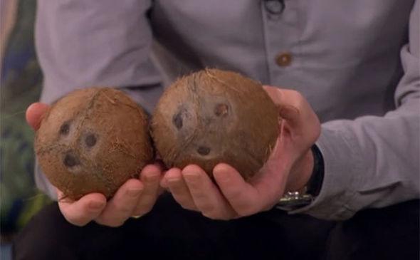 Phillip's coconuts