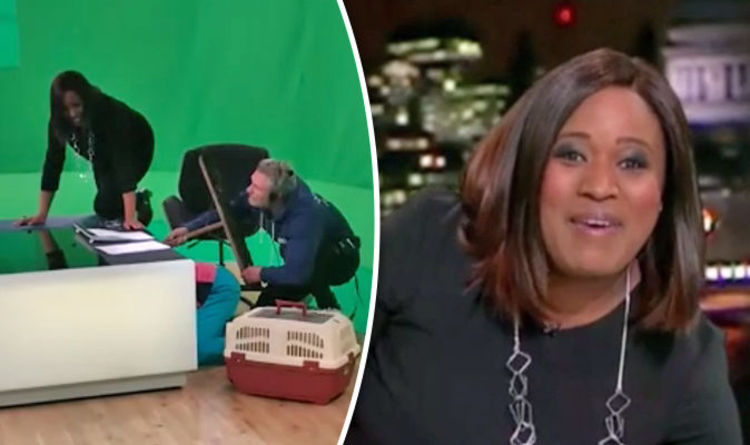 ITV News thrown into chaos as a CAT hides under Charlene
