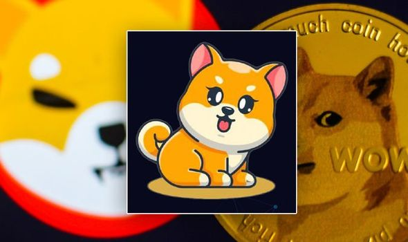 FlokiFrunkPuppy: The new DOGE and Shiba Inu competitor taking the crypto market by storm