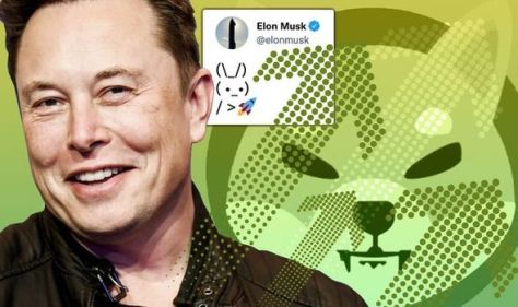 Shiba Inu price LIVE: 21% surge as Musk sparks cryptocurrency frenzy with bizarre tweet