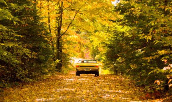 Maine Fall Wallpaper 9 Ways To Keep Your Car In Shape For Autumn Cars Life