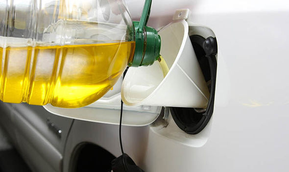 Government test VEGETABLE OIL as replacement for diesel in