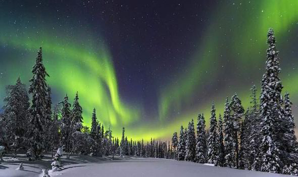 Best Northern Lights Cruise
