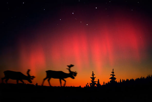 Best Places Northern Lights