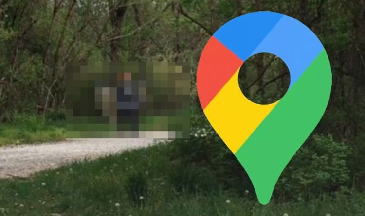 Google Maps Street View: Weird, giant creature lurking in forest scares viewers