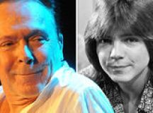 David Cassidy's family reveal he is 'very sick' as he awaits 'vital liver transplant' images 2