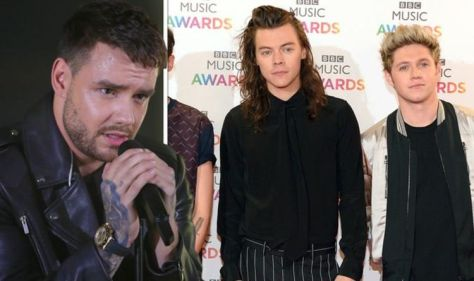 One Direction reunion: Liam Payne drops get together hint following Harry Styles call