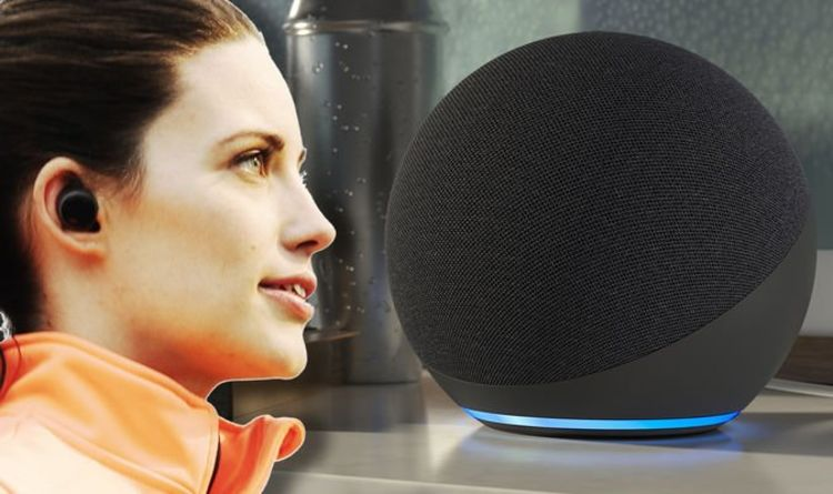 Forget the Amazon Echo! There's now another cheap way of chatting with Alexa