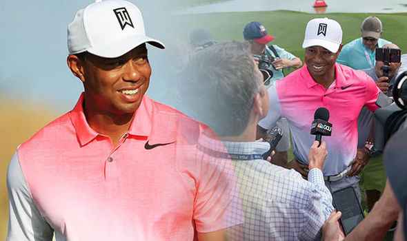 tiger woods career net worth by year