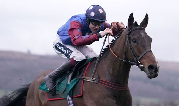 Cheltenham tips: Racing Post tipsters picks out horses you MUST ...