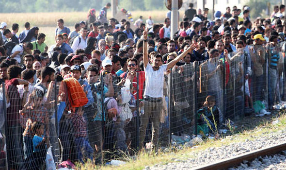 Image result for migrant crisis