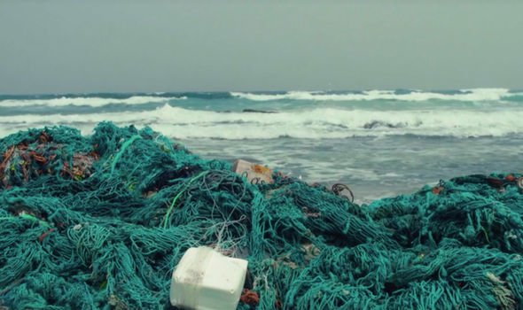 Fishing nets are said to be destructive