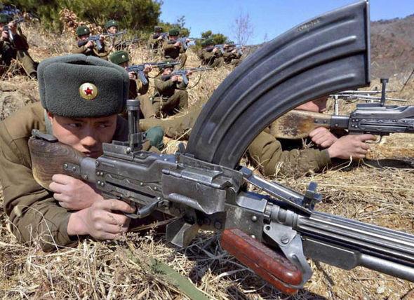 North Korea gun