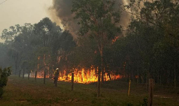 Australia Wildfires Thousands Flee From Catastrophic