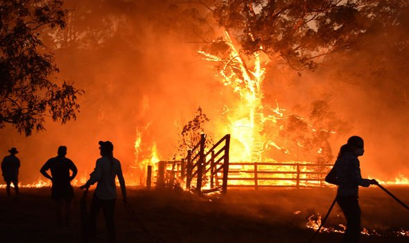 Sydney Fires Evacuation Where To Go If You Need To