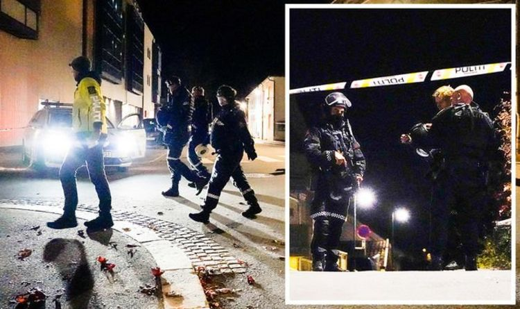 , Town rocked by night of terror as man goes on bow and arrow rampage in Norway – many dead, The Evepost News