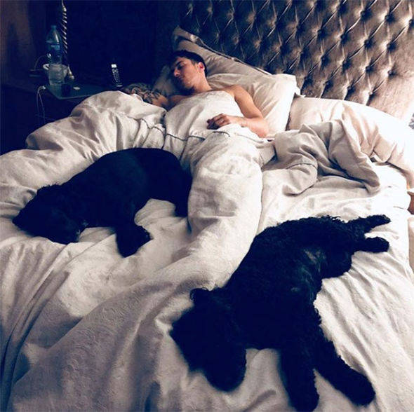 Gemma Atkinson Instagram: Gorka Marquez in bed with her dogs