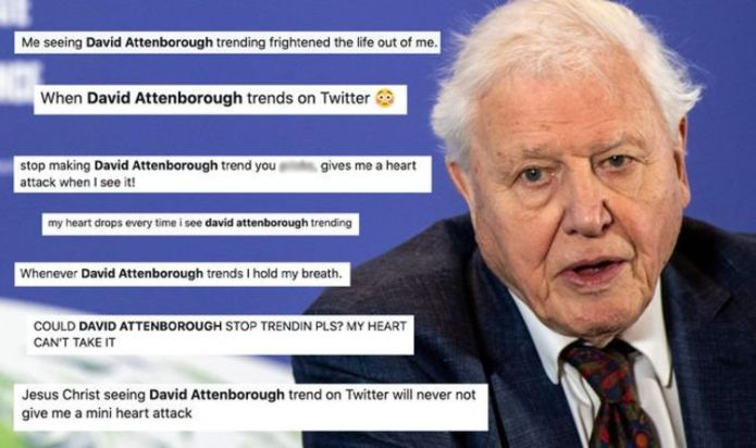 David Attenborough fans suffer 'pure panic' amid concerns about icon's health