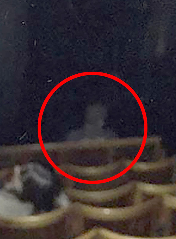 Did paranormal hunters finally proved ghosts exist after