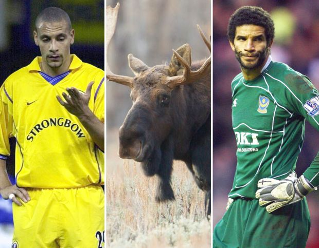 Football's funniest, unluckiest and most ridiculous freak injuries
