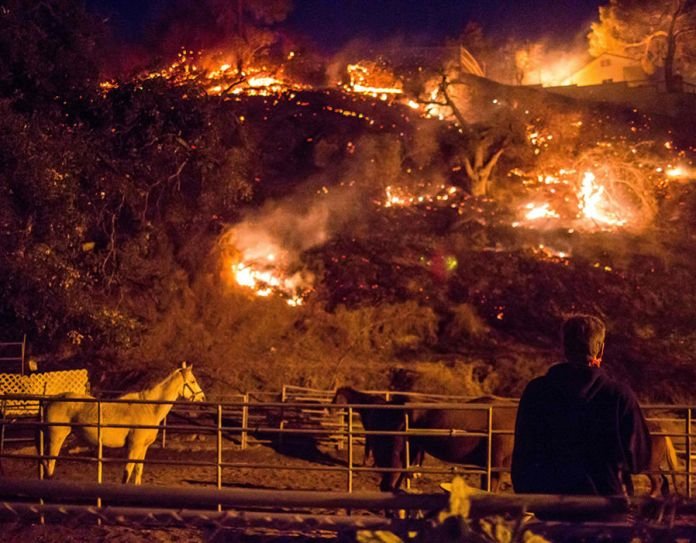 A man watches as the Creek Fire burns behind a hillside near houses in the Shadow Hills neighborhood of Los Angeles
