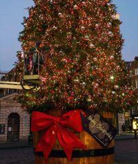 Covent Garden's Christmas tree   London's Christmas lights ...