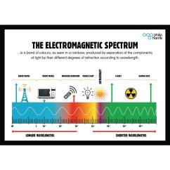 Electromagnetic Spectrum Diagram Labeled 2005 Honda Accord Speaker Wiring Product Philip Harris