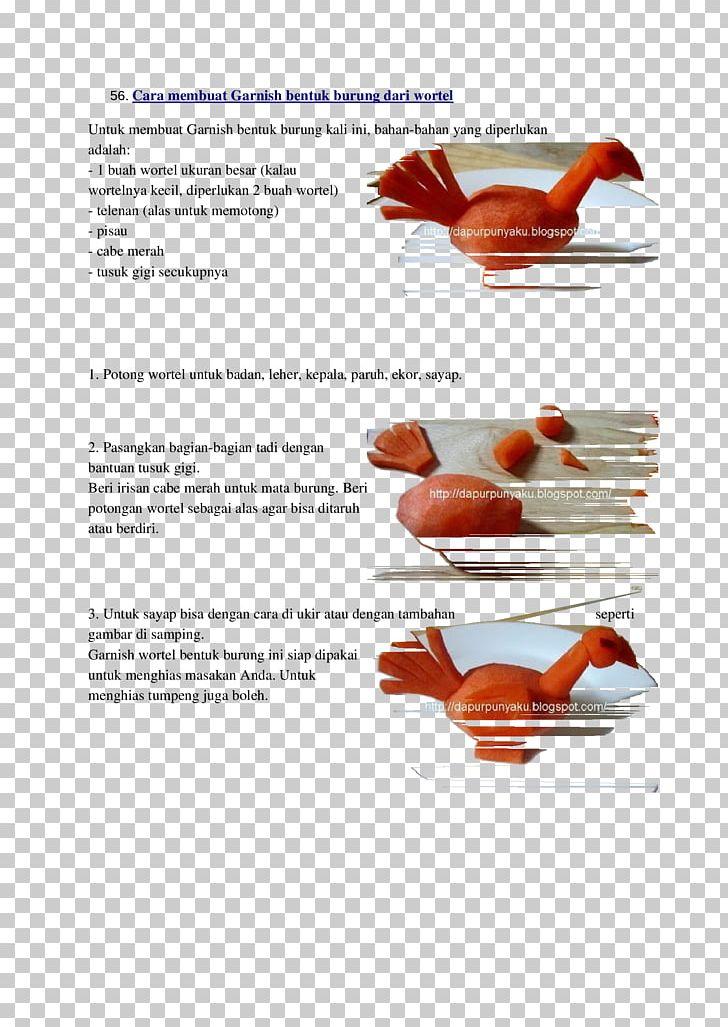Terbaik 55+ Download Gambar Burung Png