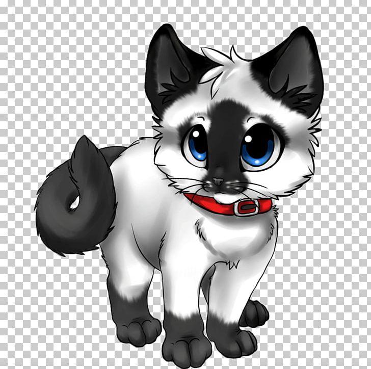 siamese cat kitten anime