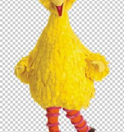 big bird abby cadabby mr snuffleupagus elmo cookie monster png clipart abby cadabby animals beak big  [ 728 x 1179 Pixel ]