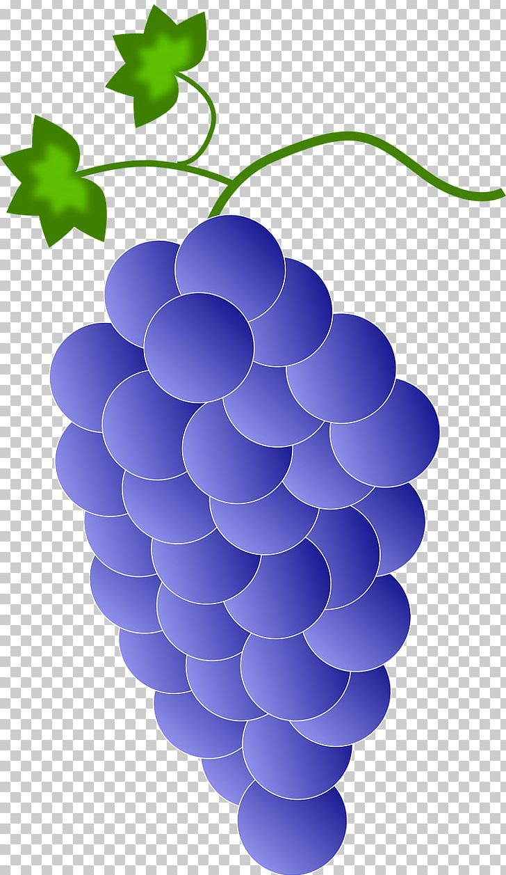 hight resolution of red wine common grape vine png clipart circle clip art cluster color common grape vine free