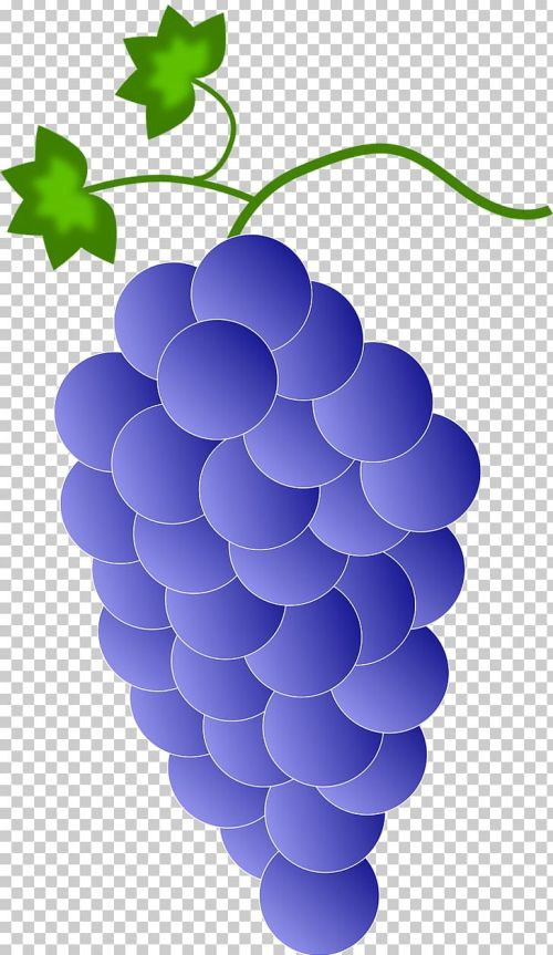 small resolution of red wine common grape vine png clipart circle clip art cluster color common grape vine free