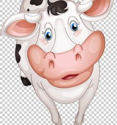 beef cattle dairy cattle farm png clipart beef cattle cartoon cattle clarabelle cow dairy free png download [ 728 x 1161 Pixel ]