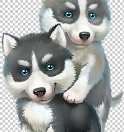 alaskan malamute siberian husky sled dog png clipart alaskan klee kai carnivoran child cuteness dog breed  [ 728 x 1102 Pixel ]