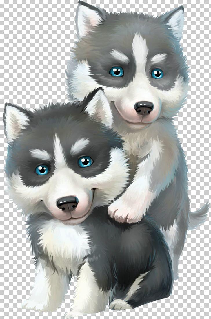 hight resolution of alaskan malamute siberian husky sled dog png clipart alaskan klee kai carnivoran child cuteness dog breed